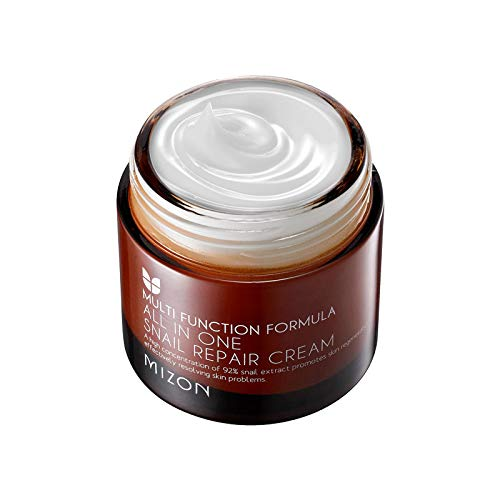 Mizon Black Snail All-In-One Cream