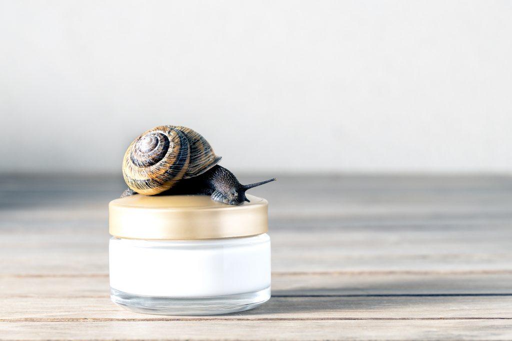Korean Snail Mucus Cream